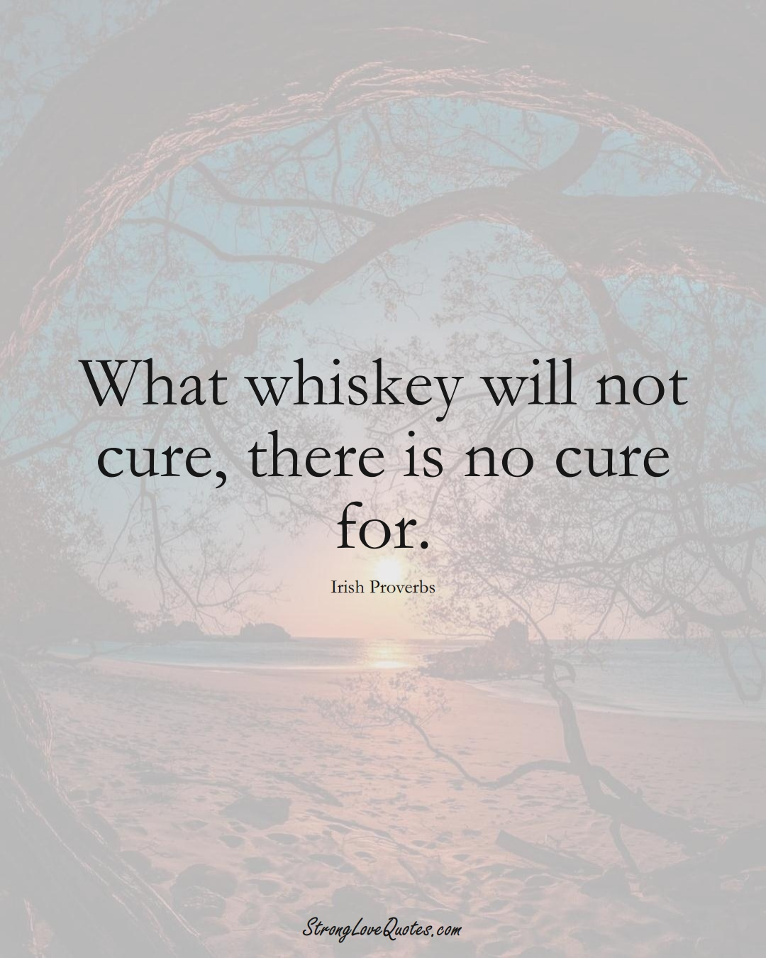 What whiskey will not cure, there is no cure for. (Irish Sayings);  #EuropeanSayings