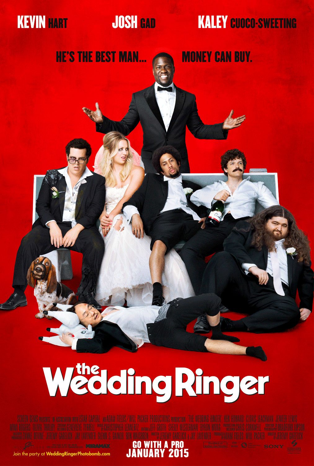 Nonton Film The Wedding Ringer (2015)