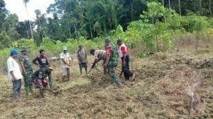TNI Bantu Petani Buka Lahan Pertanian Baru Di Distrik Unurum Guay, Jayapura - Commando
