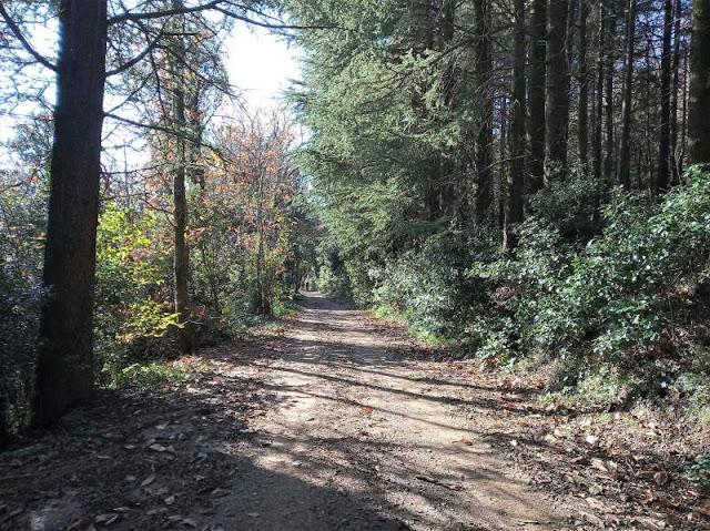 sentiero Tobler a Campo di Croce