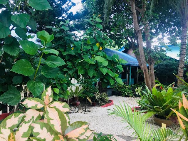 Bamboo Paradise Beach Resort