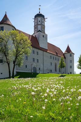 Premiumwanderweg DonAUwald  Etappe 5 von Höchstädt nach Schwenningen 03