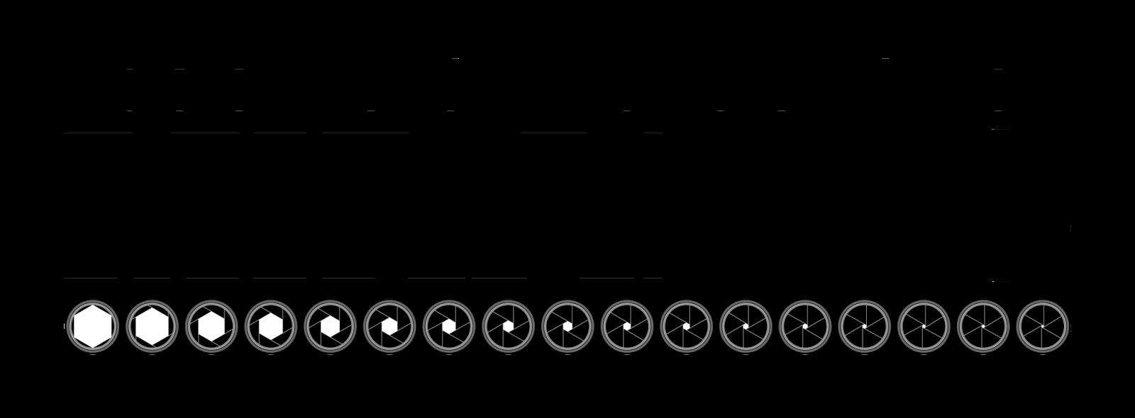 Logotipo Asociación Fotográfica Miradas