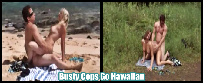 http://softcoreforall.blogspot.com.br/2013/05/full-movie-softcore-busty-cops-go.html