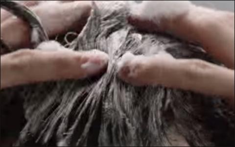 頭がかゆいはハゲの黄信号?薄毛も悪化させないための11コの改善点!-4