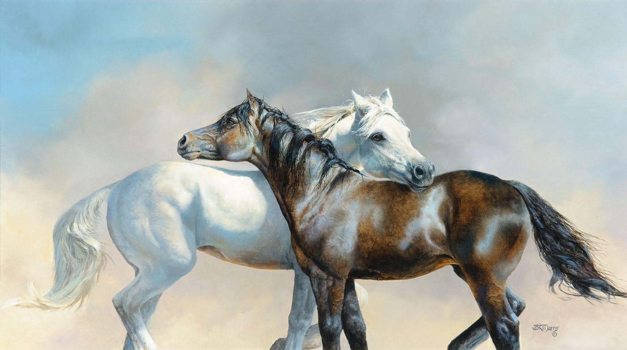 خلفيات حصان