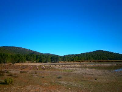 las lagunas de talayuelas, autor, miguel alejandro castillo moya