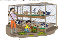 Kunci Jawaban Pembelajaran 6 Subtema 1 Tema 1 Kelas 5 Halaman 51, 53 dan 54