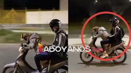 Hombre que puso a su perro a conducir una motocicleta sería sancionado