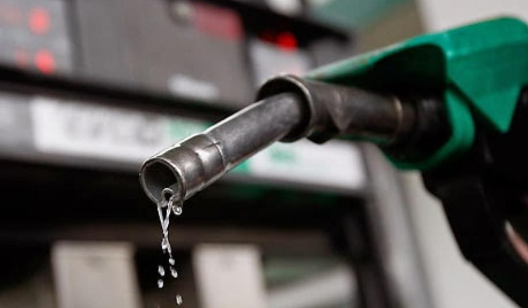 harga minyak minggu ini