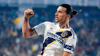 Zlatan Ibrahimovic Complete life Biography ( Zlatan Ibrahimovic Biography )