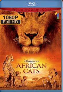 Felinos De Africa[2011] [1080p BRrip] [Latino-Ingles] [GoogleDrive] LaChapelHD