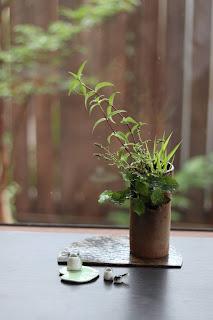 筒型の鉢に入ったフウチソウ、ササリンドウの盆栽とカエルの置物