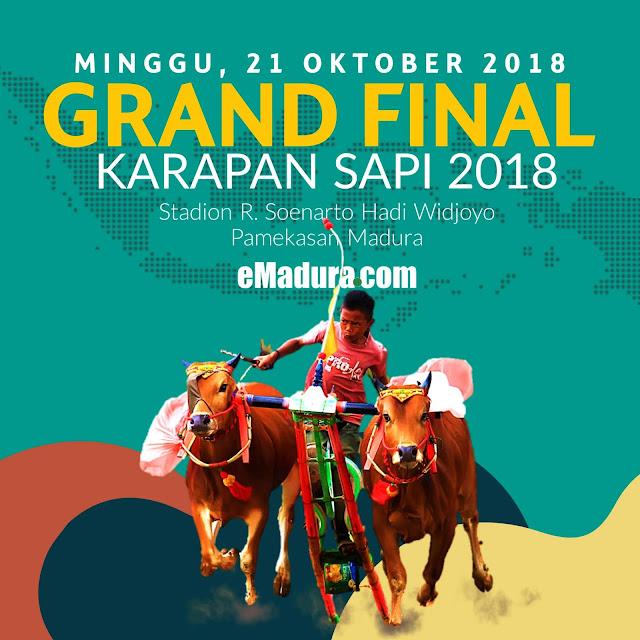 Grand Final Karapan Sapi Madura 2018
