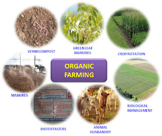 Organic Farming methods