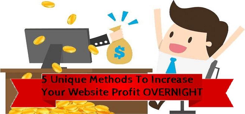 website revenue generation