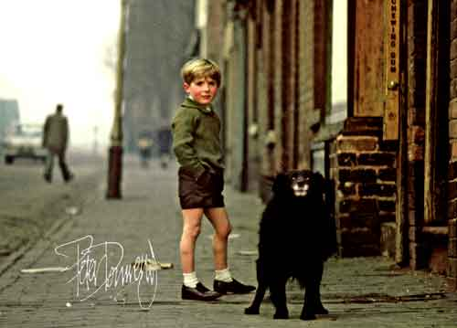 Boy Dog Street Birmingham