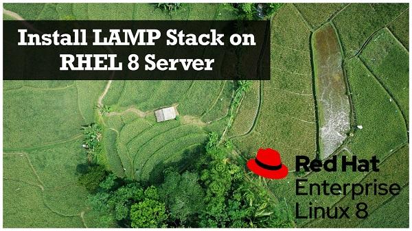Install LAMP Stack on RHEL 8 Server