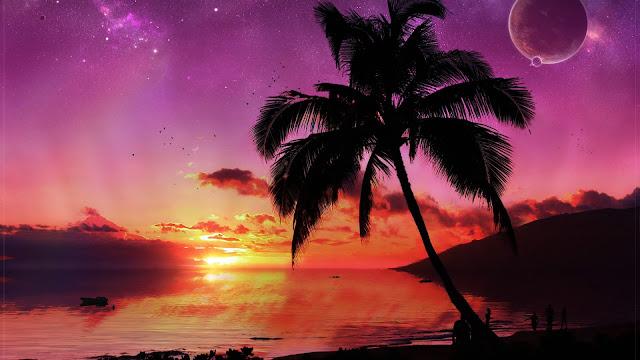Tropisch eiland met palmboom hd wallpapers - Rode keuken met centraal eiland ...