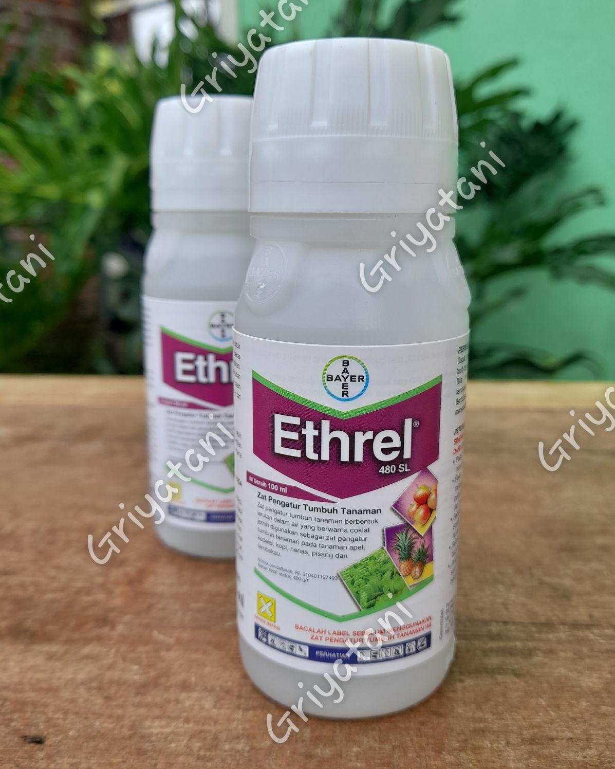 Ethrel pematang buah