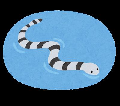 ウミヘビのイラスト
