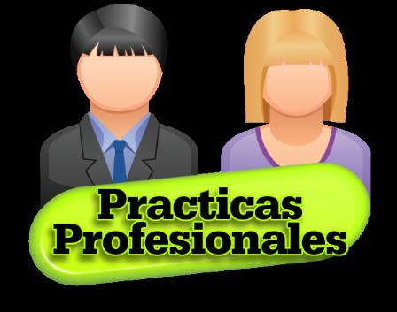 Resultado de imagen para practicas profesionales