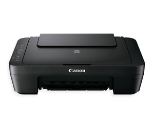 Canon PIXMA MG2900/MG2920 Series