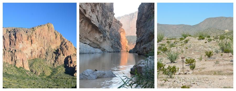 Le magnifique  parc national  de Big Bend National