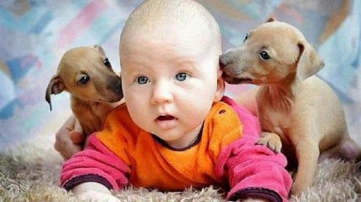 ТОП-15 Смешных Фото Детей И Их 4-лапых Друзей