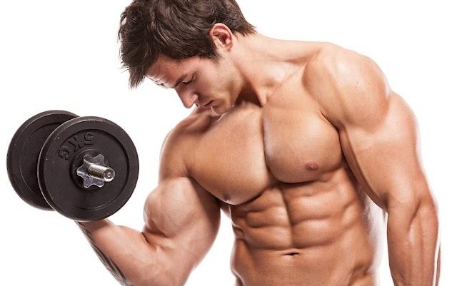 A Perfect Principal Towards Building Muscle Naturally
