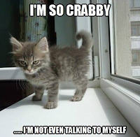 Picture is a grumpy looking kitten. Caption: I'm so crabby, I'm not even talking to myself!