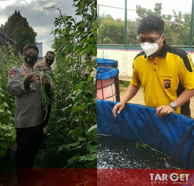 Jaga Ketahanan Pangan, Ditpolairud Polda Kalbar Budidaya Ikan dan Bercocok Tanam