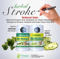 Obat Lumpuh Ringan Berat / Darah Tinggi / Kolesterol / Jantung / Struk Terlaris