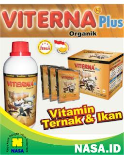 Viterna Vitamin Ternak Cair Serbuk