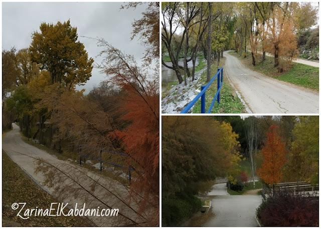 Taman Lineal del Manzanares 28 November 2019