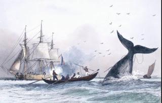 pêcheurs basques baleine