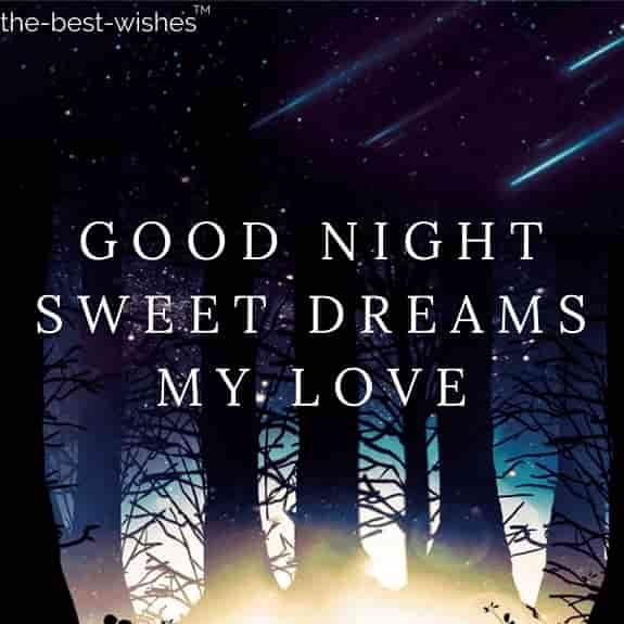 good night sweet dreams my love