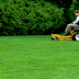 Reasons Many People Invest in Professional Lawn Maintenance Service