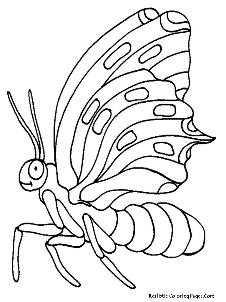 Realistic Butterfly Coloring Pages Realistic Coloring Pages