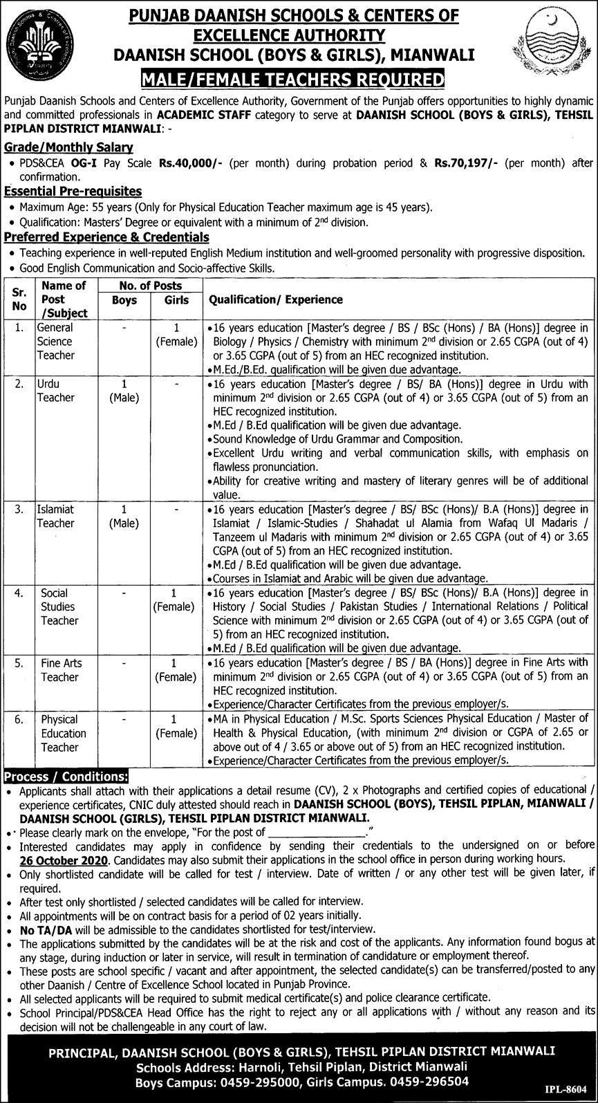 Punjab Daanish School Job Advertisement in Pakistan For Teaching Vacancies