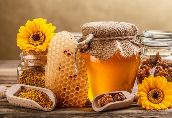 Benefits of bee honey on an empty stomach slimming