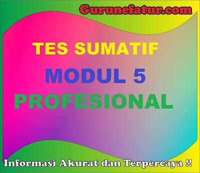 Tes Sumatif Modul 5 Profesional