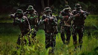 """Pak Tedjo  : TNI adalah alat negara. """"TNI bukan alat kekuasaan,"""" - Commando"""
