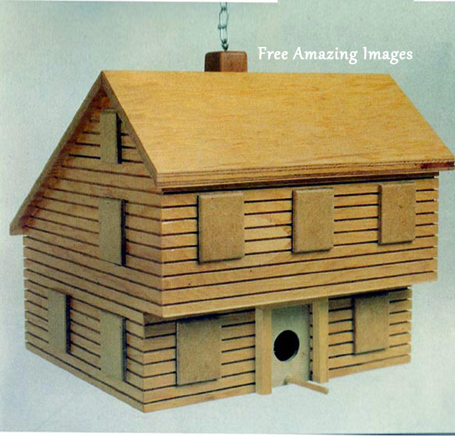 Free Amazing Images: 26 Best And Most Creative Bird House