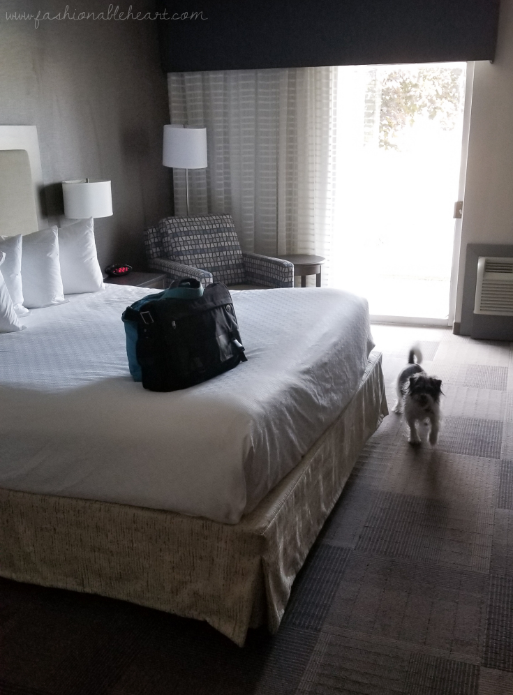 bbloggers, lbloggers, lifestyle blog, southern blogger, canadian blogger, ontario blogger, st. catharines, ontario, discover ontario, explore ontario. traveling during covid19, short trip, small vacation, best western, pet friendly