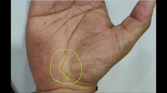 Fish Sign in Palmistry – Reading and Meaning