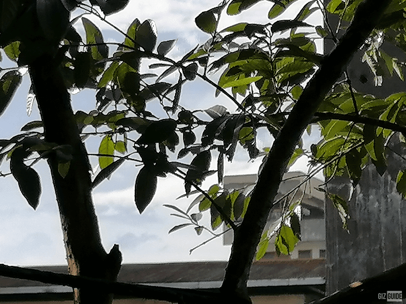 Outdoor daylight 6x