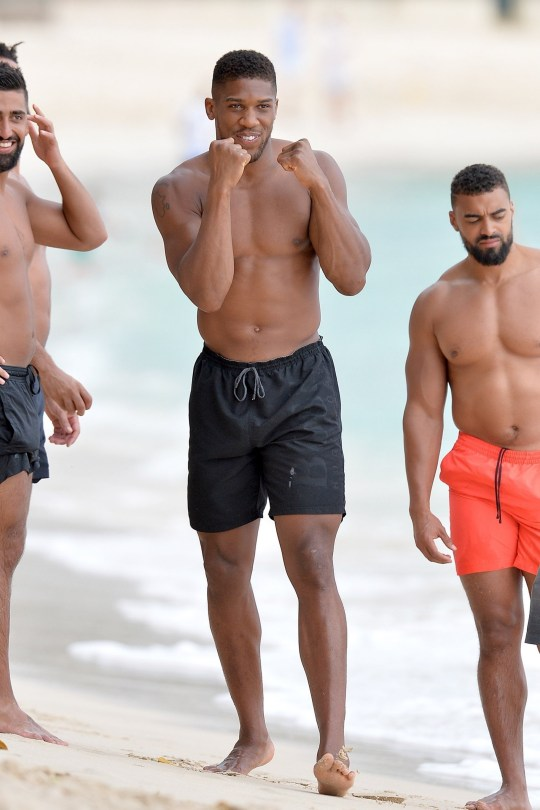 Anthony Joshua fist-bumping a monkey on the beach