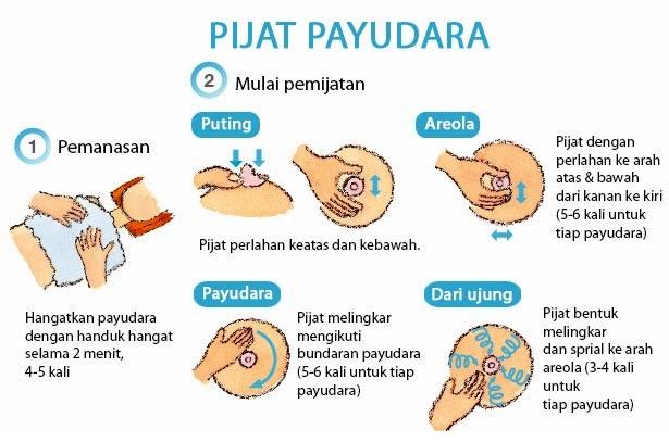 0857 3213 4547 Sms Telf Jual Fiforlif Malang Resmi Cara Membesarkan Payudara Setelah Menyusui