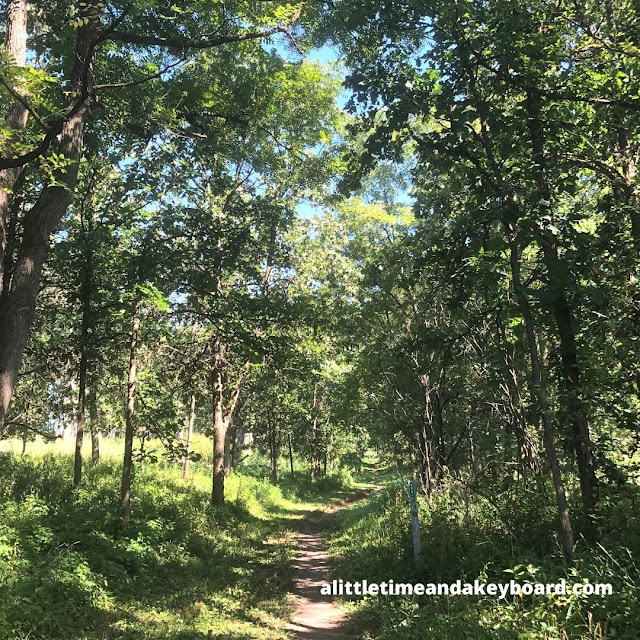 The unpaved path beckoned us forward on this section of the Poplar Creek Trail System